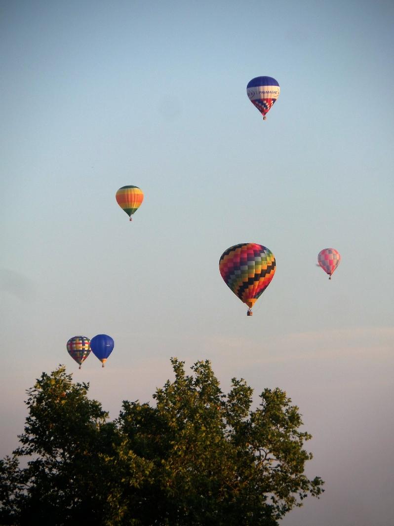 Les montgolfières au dessus du jardin pour le festival pyrotechnie